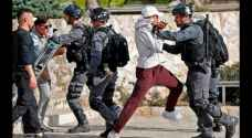 17 Palestinians detained in the West Bank and Jerusalem's continuous unrest