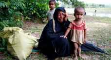 Satellite data indicates Burmese aggression towards Rohingya