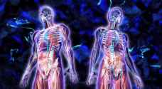 Breakthrough discovery: Scientists discover new human organ