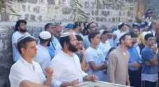 500 settlers storm Al-Aqsa on Jewish 'Throne Day'