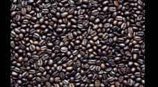 Audit Bureau: 20,000 kg infested coffee approved by Customs