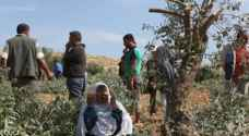 Israeli army forces Palestinian farmers off their land in south of West Bank