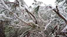 JMD warns of frost late night, tomorrow morning