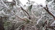 JMD warns of frost late night, tomorrow morning