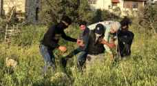 IOF injure three Palestinians in Kafr Qaddum