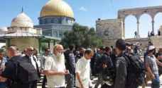 Settlers storm courtyards of Al-Aqsa Mosque