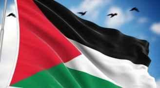 Central Bureau Statistics: Palestine Faces Social ....