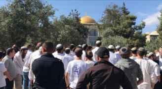 Hundreds of Israeli settlers storm Aqsa Mosque