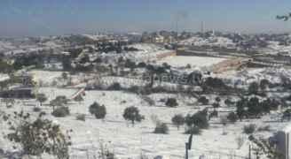 Video: Snow falls in Amman this morning