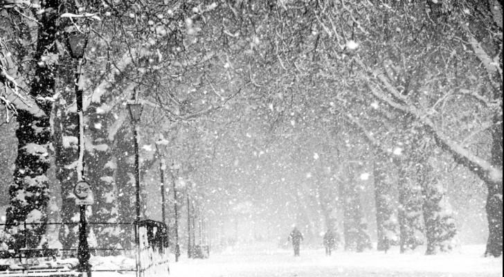 Rumor: Jordan, Middle East to witness coldest winter