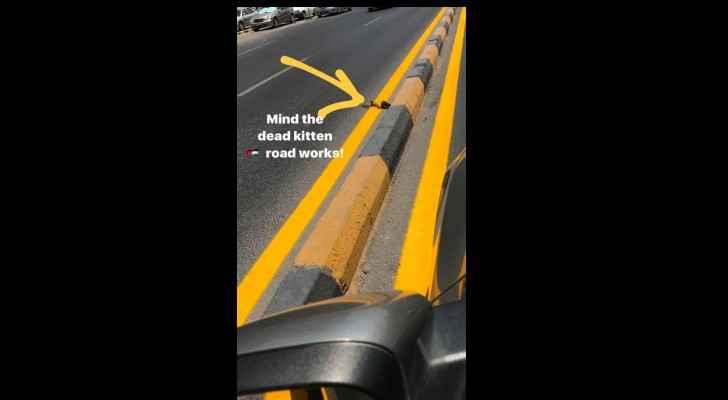 Crossing the line: Street workers paint over dead kitten