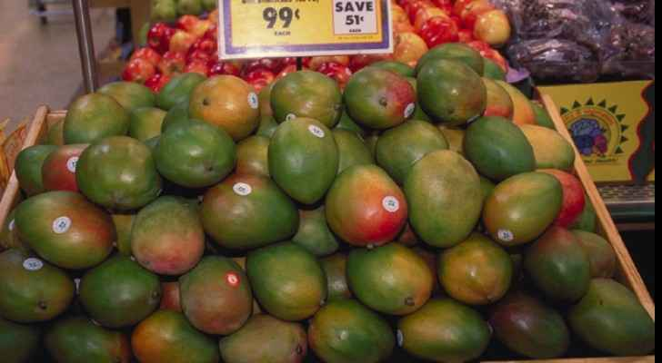 Israeli mangoes have found their way into Jordan's markets. (File photo)
