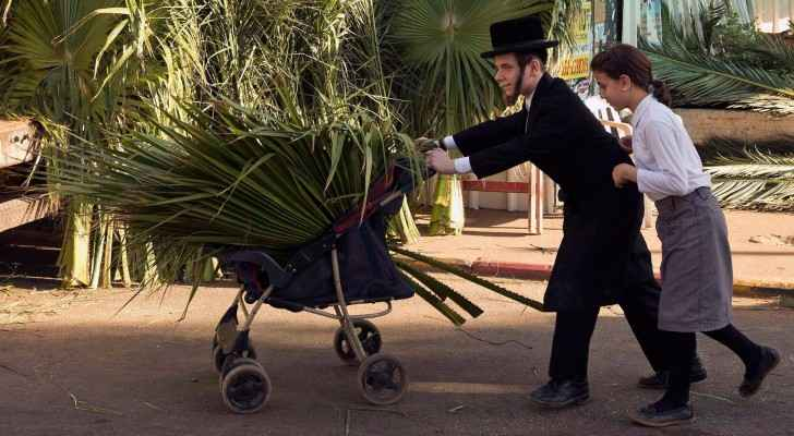 Gaza exports palm leaves to Israel for Jewish feast