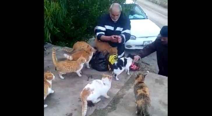 Ghassan feeding street cats in Jordan. (Screenshot)