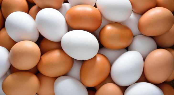 The boy claims to have laid almost 20 chicken eggs over the course of two years. (Kids Eat Smart)