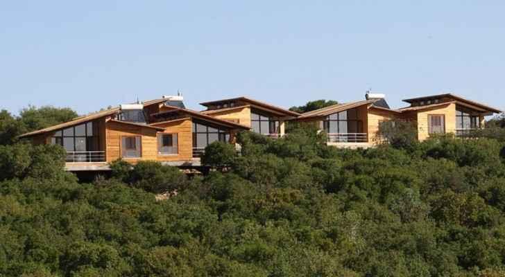 Ajloun Forest Reserve is a nature reserve in Ajloun. (WildJordan)