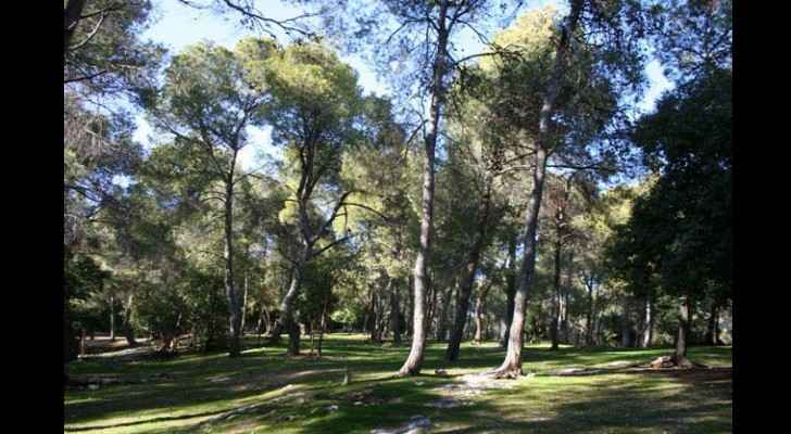 There are currently 140 public parks in the capital. (Jordan Times)