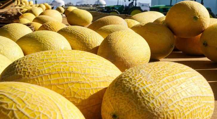 Jordanian melons are disease-free. (Toronto Star)