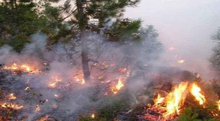Fifteen dunums of land were eaten up by the fire. (Roya)