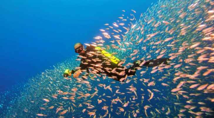 Diving and snorkeling are popular activities in the warm waters of the Red Sea of Aqaba. (Gallery – Deep Blue)