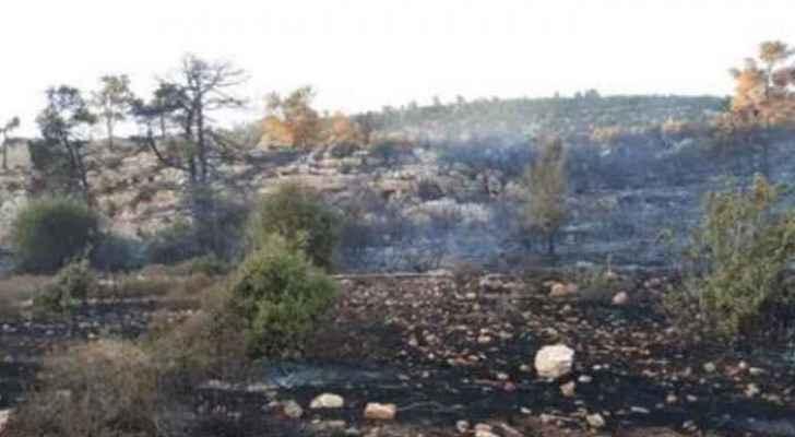 Fire in Ajloun destroys 200 trees