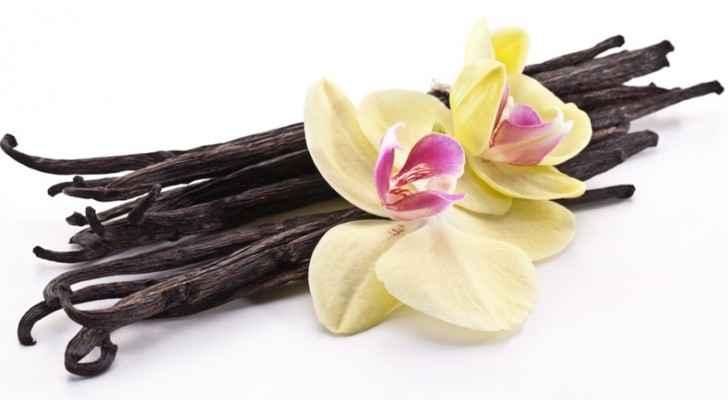 Vanilla comes from vanilla orchids. (IEG Vu - Informa)