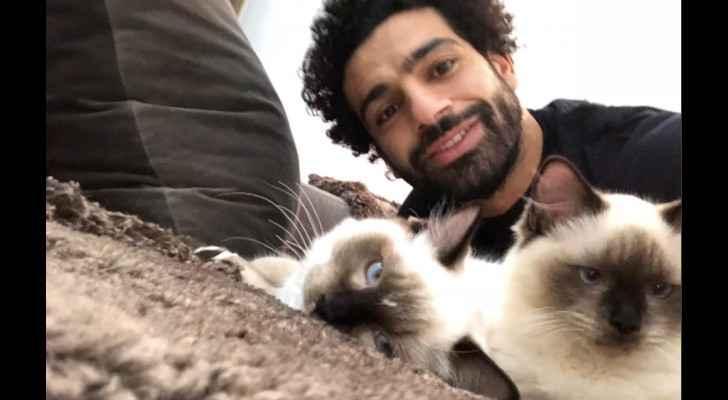 Salah: No to animal rights violations