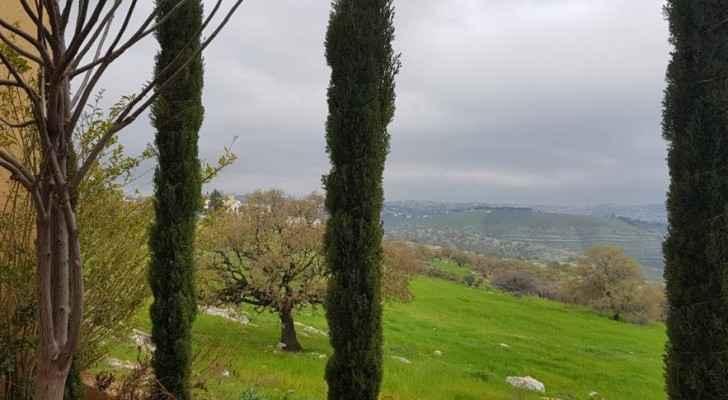 (Photo: Maisa'a Nabulsi)