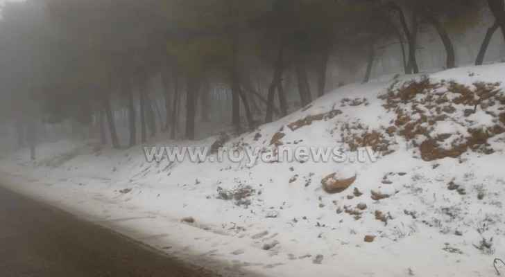 In pictures: Snow covers areas of Tafilah governorate