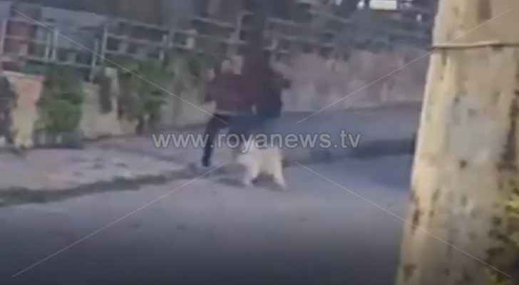 Video: Two unknown men try to steal dog in Abdoun