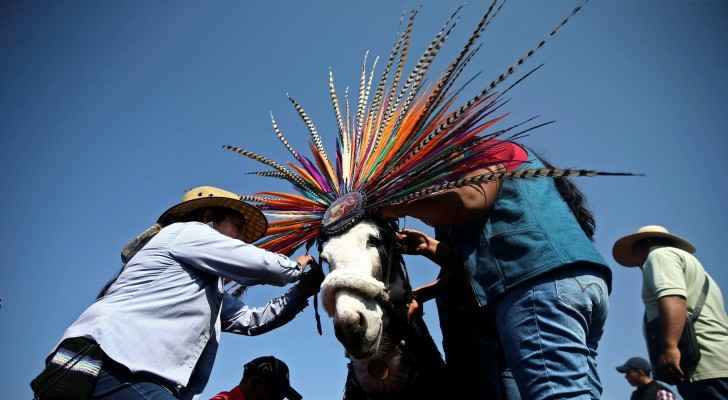 Photos: Mexicans celebrate annual Donkey Day