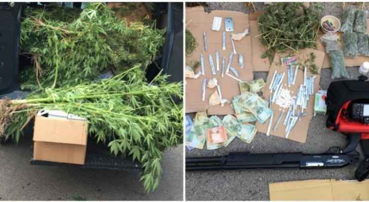 Eight drug dealers  in possession of large quantities of marijuana arrested in south Shouneh