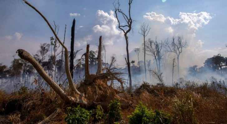 Brazil rejects G7 aid to fight Amazon fires