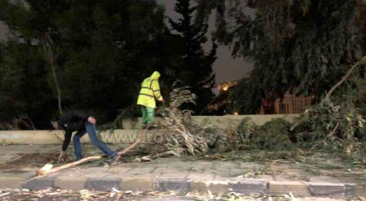 Parts of tree fall on a street in Amman due to strong winds