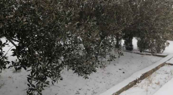 Photos: Snowfall in southern Jordan this morning