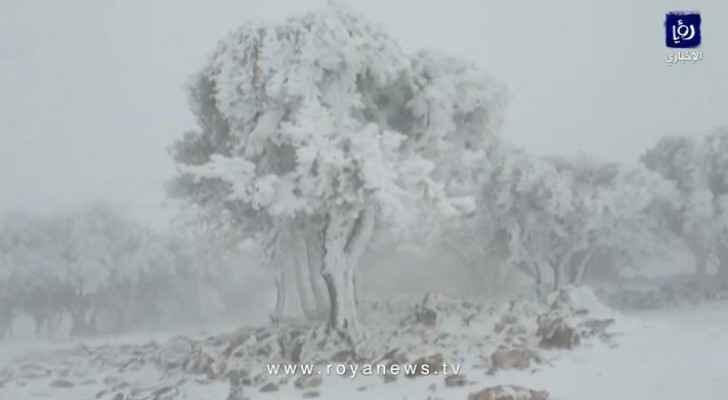 Watch snow falls over Al Hisheh in Petra