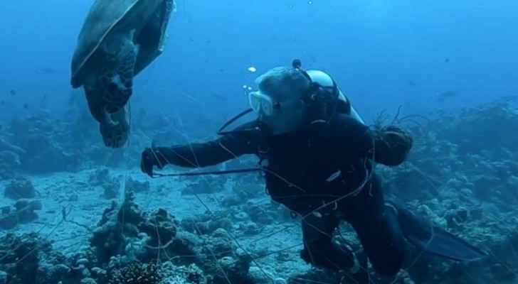 Watch: King, Crown Prince join divers in cleaning Aqaba sea