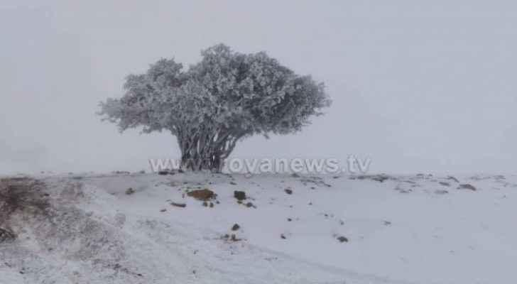 ArabiaWeather discusses 2020 winter season