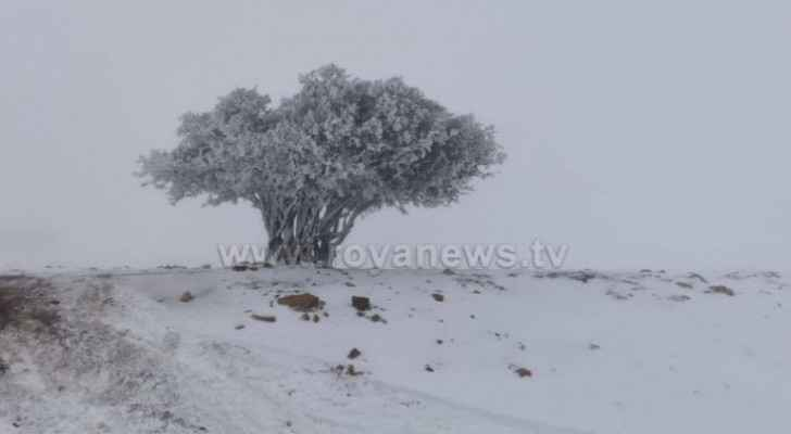 Heavy snowfall expected in third week of January: Arabia Weather