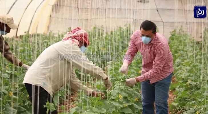 Agriculture worker dies from heat stroke in northern Jordan Valley