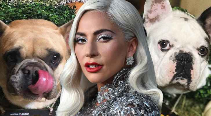 Five arrested in violent robbery of Lady Gaga's dogs