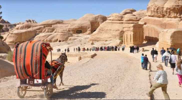 Tourism official expects 800 employees to return to work in Petra tourism sector by September