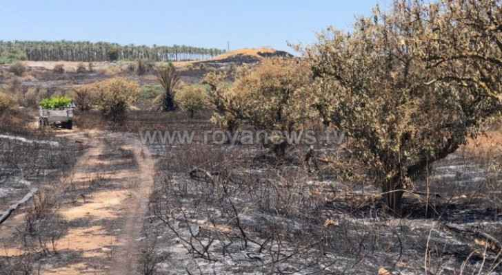 Zuaiter calls on government to hold Israeli Occupation accountable for fires in Jordan Valley