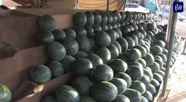 Ministry of Agriculture issues important statement about Jordanian watermelons